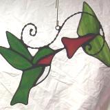 Hummingbird & Red Trumpet Flower