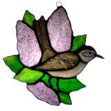 Catbird in Purple Lilac Bush