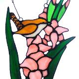 House Wren In Gladiolus