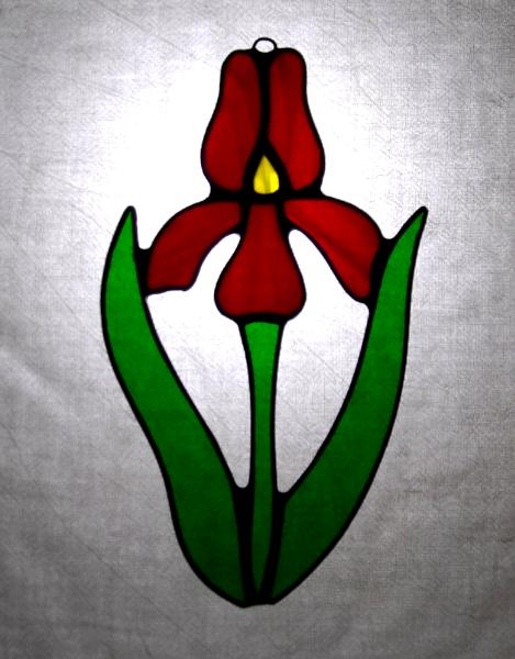 Red Iris Flower Sun Catcher