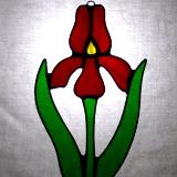 Red Iris Flower Sun Catcher