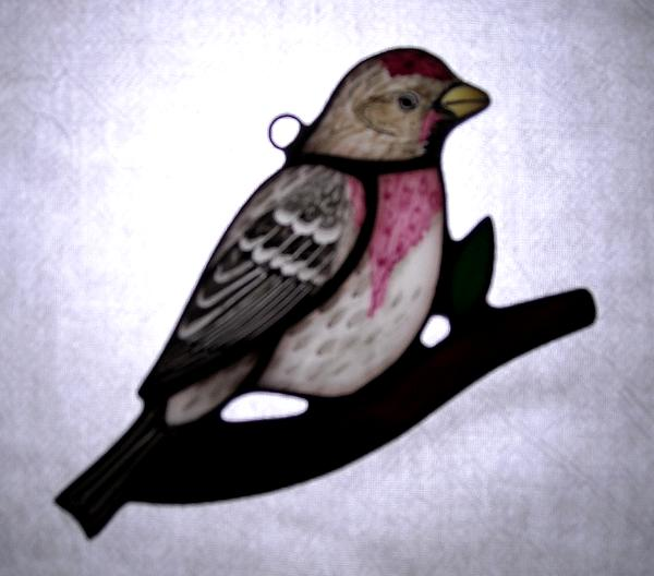 Common Redpoll Sun Catcher